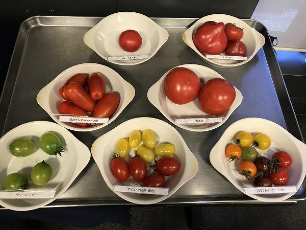 オリーブ油に生トマト 見比べ味比べ